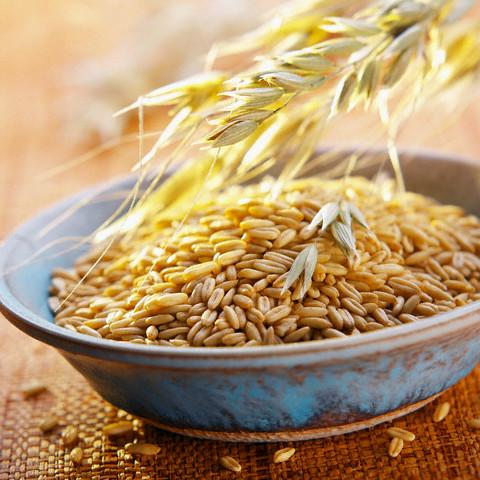 В Адыгее собрали первый урожай ячменя - урожайность составляет 55-60 ц/га